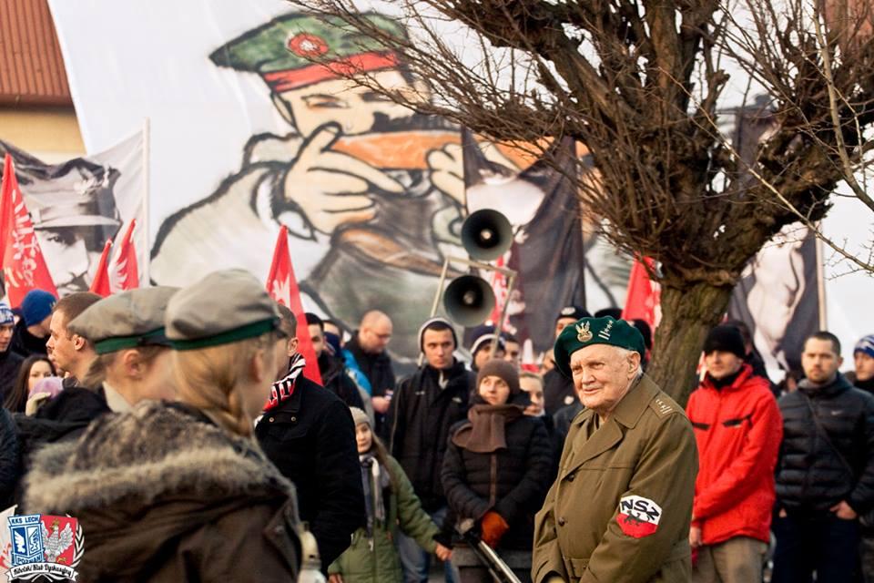 Marsz Zwycięstwa Powstania Wielkopolskiego 2015 8